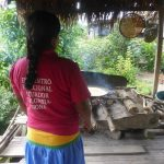 Siona tour in Cuyabeno wildlife reservaat Ecuador