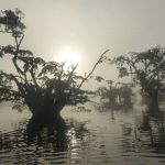 Laguna Grande Cuyabeno Reservaat