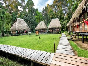 Nicky Lodge Cuyabeno Amazone Ecuador reizen